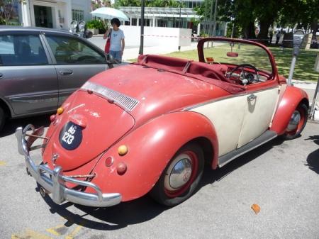 (MAL) 100314 Penang Beetle_resize