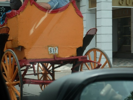 S 17    --  A few horsedrawn carriages ply forhire near the cruise terminal in Hassau and some carry an old black-on-white  plate type no longer in use.     Brumby archive 2015
