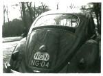 (NGN 50-59).Hollandia_NG 04_(NGN oval)_Beetle.plKS