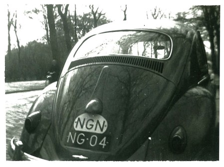 (NGN 50-59).Hollandia_NG 04_(NGN oval)_Beetle.plKS